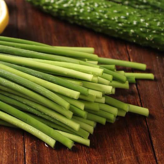 濟寧金鄉縣 新鮮蒜苔,大量供應,隨時有貨,5斤裝支持各電商一件代發!