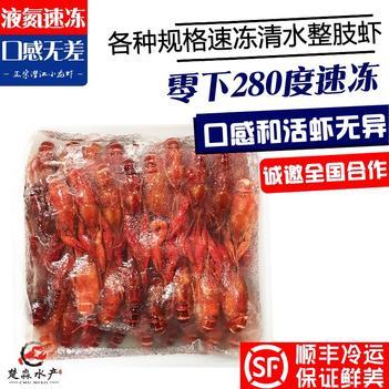 冻小龙虾 液氮速冻清水冻虾456/678/789/8910/1两冷冻虾