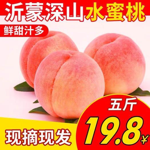 臨沂蒙陰縣 桃子新鮮當季新鮮水蜜桃孕婦水果現摘毛桃油桃軟桃多汁五斤包郵