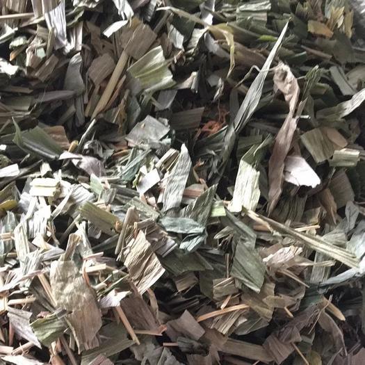 玉林 竹叶中药材淡竹叶