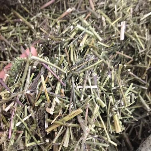 玉林 批發無硫干凈無雜中藥材 荊芥