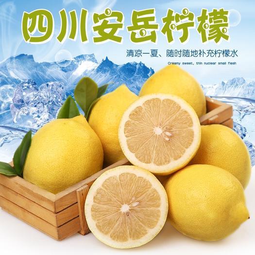 南宁江南区 安岳新鲜香水柠檬5斤装大果