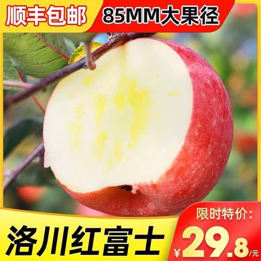 宁县 顺丰包邮陕西洛川红富士5斤10斤现货苹果水果新鲜整箱红富士