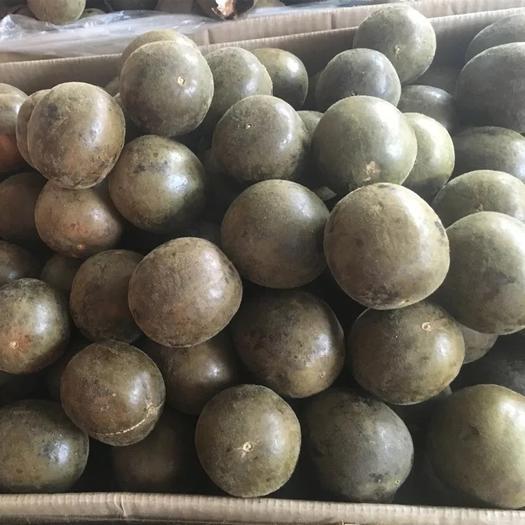 玉林玉州区 供应优质罗汉果 广西土特产罗汉果 多种规格 散装批发