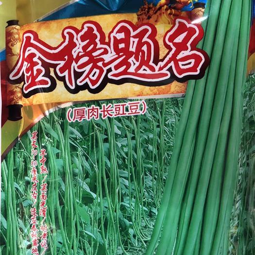 梅州平远县 高档翠绿长豆角种子70-80厘米光滑无鼠尾耐老化 400克