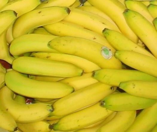 南靖县 香蕉青蕉