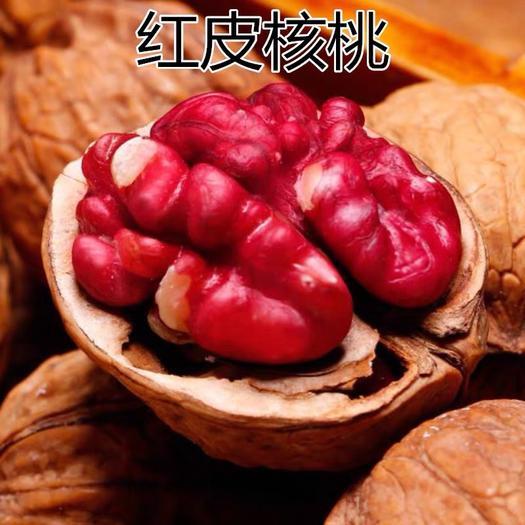平邑县薄皮核桃苗 红仁嫁接苗薄皮核桃树,南方北方种植,当年结果,四季果