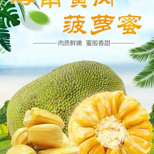 萬寧萬寧市海南菠蘿蜜 基地直供、每日現摘、發貨塊、誠信經營、部分省份包郵、壞包賠