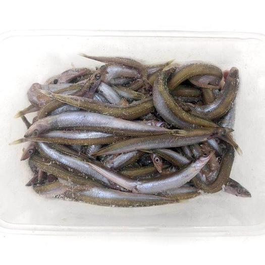青岛小银鱼 面条鱼餐盒装