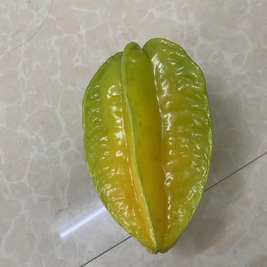 廣州增城區 增城特產楊桃 基地種植 當季水果 大量出售