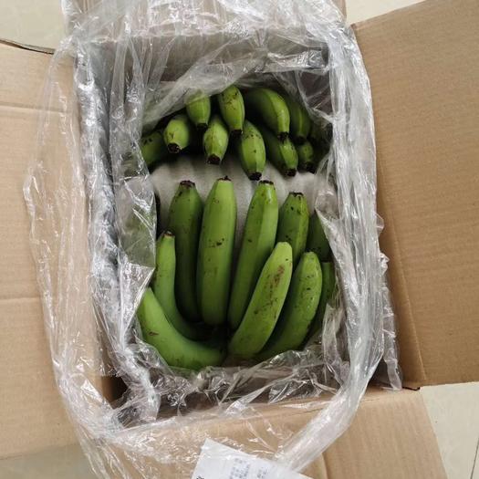 昆明五华区 云南河口纯天然香蕉,网红焦,9斤装,支持电商 水果店铺货