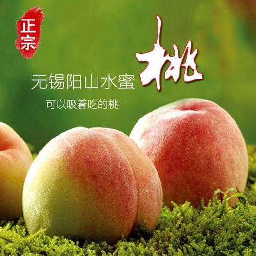 泰州泰兴市 水蜜桃王