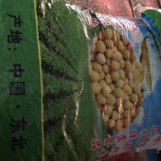长沙雨花区青豆 青皮豆