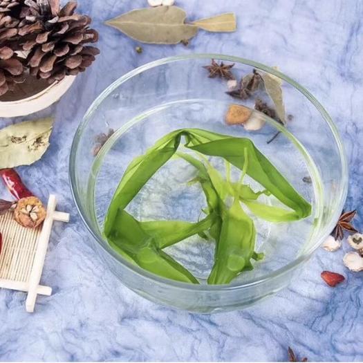 福州 海带嫩苗:海带芽:人工采摘:优选最高品质: