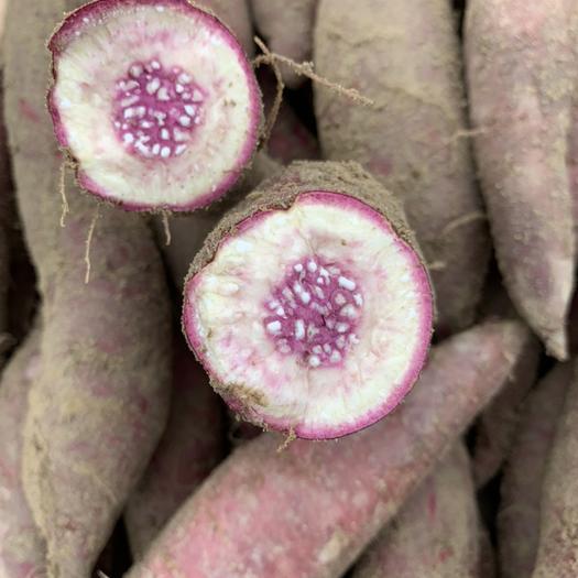 茂名 一點紅香薯冰淇淋紫心紅薯靚貨自己包地種植免中介包上車?