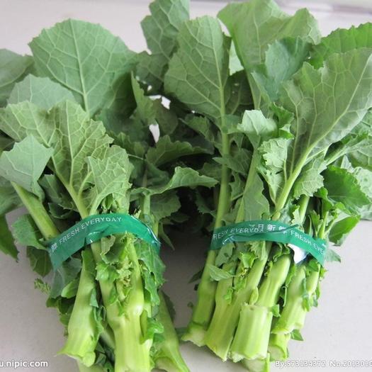 長沙 油菜苔