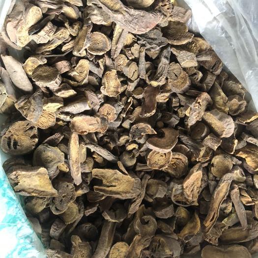 陇西县 大黄,水根片批发马蹄黄各种规格