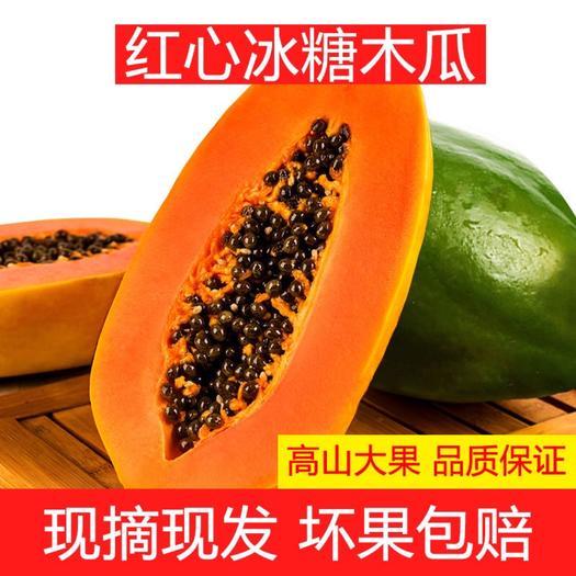 横县 [红心木瓜牛奶木瓜]热现摘现发当季应季水果3斤5斤9斤包邮