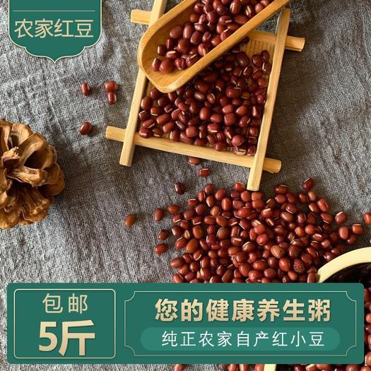 泰來縣 2019年農家自產紅豆赤小豆五谷雜糧養生紅豆粥5斤包郵