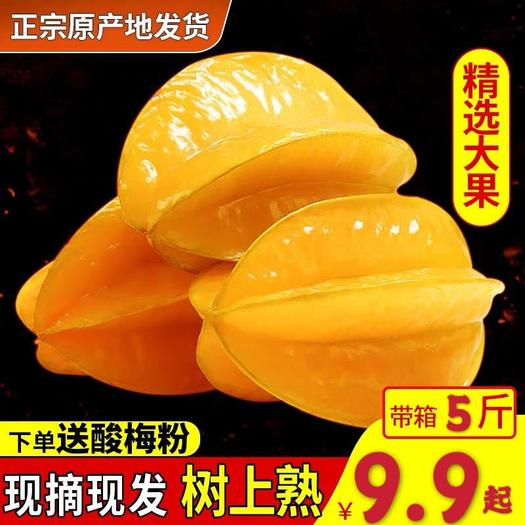 南靖縣 福建漳州甜楊桃5斤水果當季楊桃新鮮現摘現發