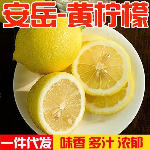 成都 四川安岳尤力克檸檬5斤裝黃檸檬精選精選廉價丑果榨汁皮薄多汁