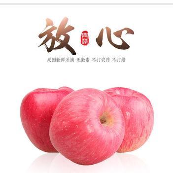 【顺丰包邮】陕西红富士苹果洛川冰糖心苹果陕西10斤装当季