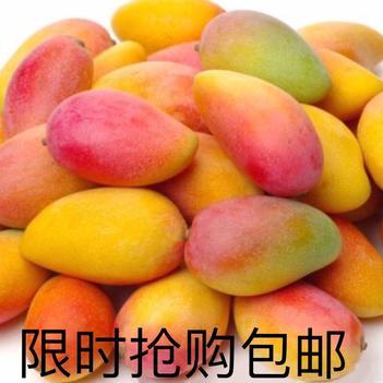 【特价包邮】海南贵妃芒果红金龙小贵妃芒果应季热带新鲜水果批