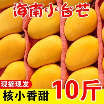 【特价包邮】海南小台芒小芒果台农特新鲜当季水果热带水果批发