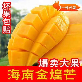 【现摘现发】海南金煌芒果黄皮芒果青皮甜心特大果9斤包邮