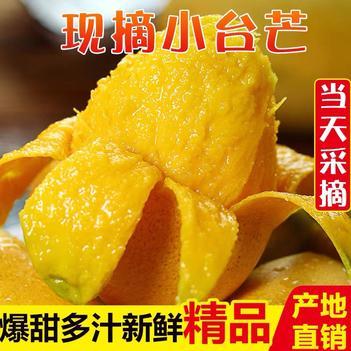 【现摘现发】小台农芒果新鲜百色鸡蛋芒海南大台农台芒包邮