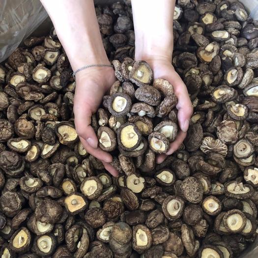 香菇干货特级无根干香菇批发野生蘑菇椴木香茹干货散装土特产新货