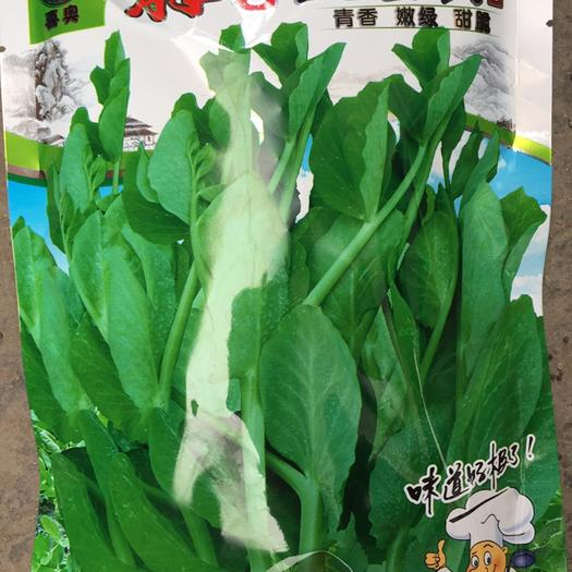 成都豌豆尖 7-10cm 较饱满