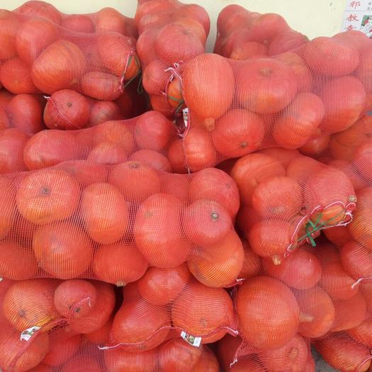 神池县日本南瓜 2~4斤 扁圆形