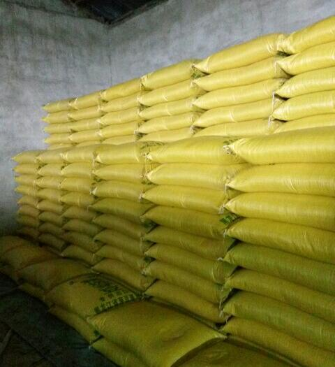 齐齐哈尔讷河市芽豆690 黄芽豆