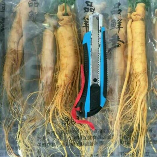 通化縣長白山人參 單支真空包裝,一顆毛重65克左右,保存時間更長,更易保存。