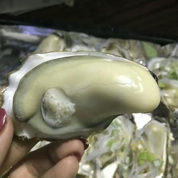 牡蛎  现捞现发,每只2-3两,5斤一件