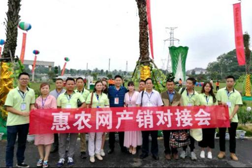 2017汉寿蔬菜网上采购节启幕 惠农网产销对接助力销售