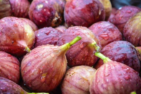 无花果的外皮是可以吃的吗?无花果的食用禁忌