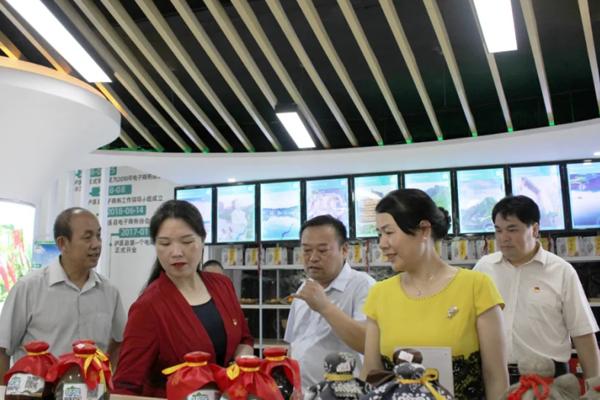 统战工作实践创新基地正式揭牌,县委副书记向汝莲考察县电子商务公共服务中心