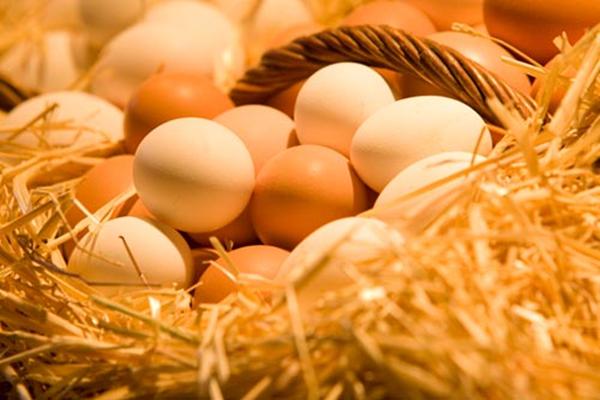 鸡蛋价格一个月飙涨逾六成,后期鸡蛋价格还会上涨么?