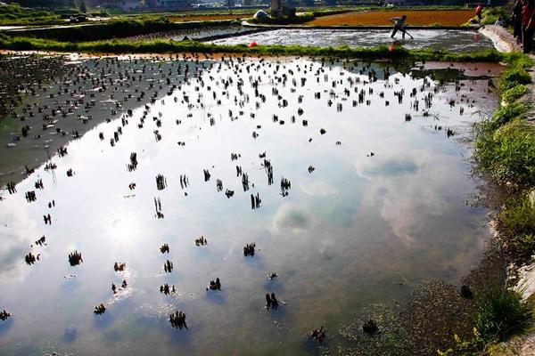永久性征地多少钱一亩?什么是永久性退出土地?