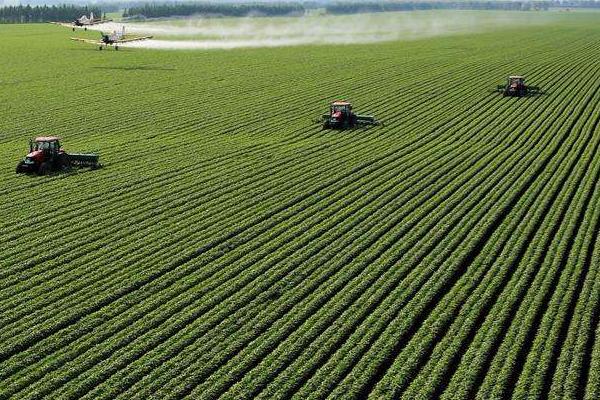 农业种植补贴每亩多少钱?