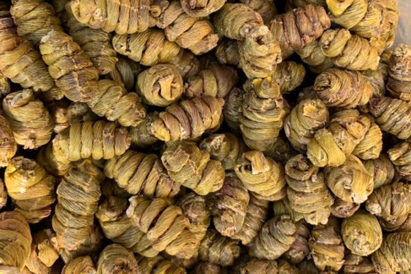 铁皮枫斗多少钱一斤?和铁皮石斛是一样的吗?