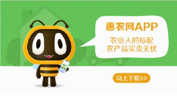 """实现销售额超1.58亿元 惠农网""""双品网购节""""助力农产品销售"""