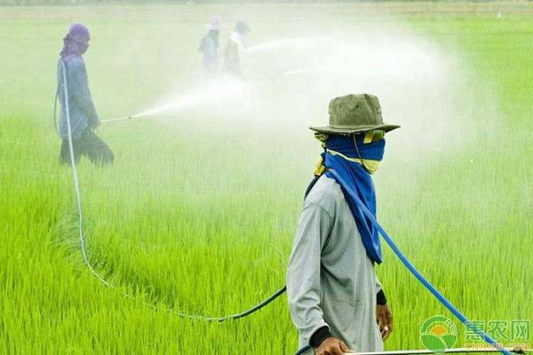 农药使用的八大原则